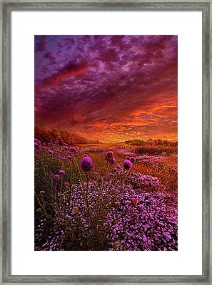 Then Ever Been Lifted Before Framed Print by Phil Koch