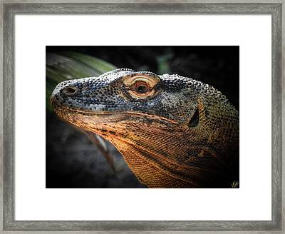 There Be Dragons, No. 5 Framed Print