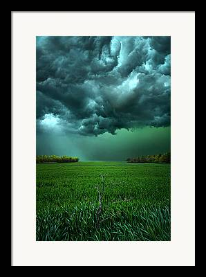 Meadow Framed Prints