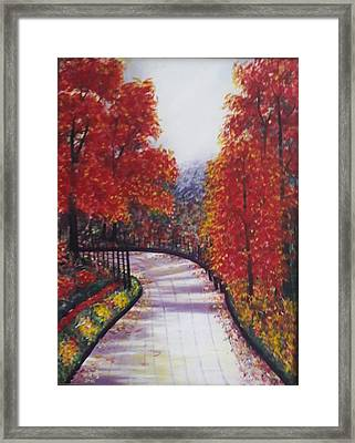 There Is Always A Bright Road Ahead Framed Print by Usha Rai