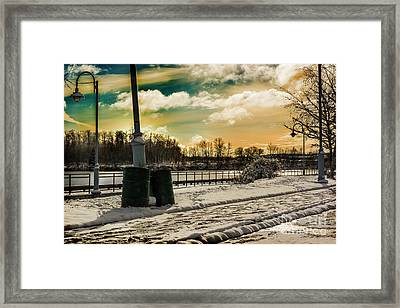 These Cans Stand Resolute Framed Print