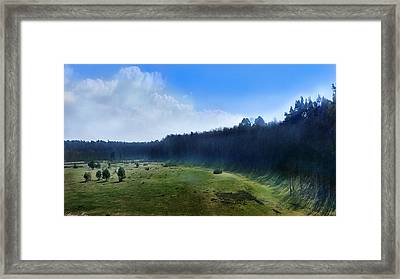 These Days Framed Print
