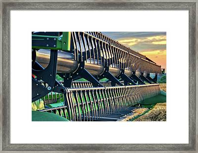 Framed Print featuring the photograph These Teeth Mean Business by Mark Dodd