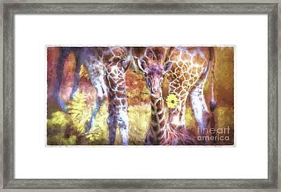 The Whimsical Giraffe  Framed Print