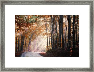 They Coming From Heaven Framed Print by Janek Sedlar