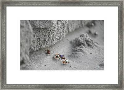 They'll Never Find Us Here Framed Print