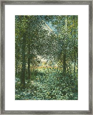 Thicket  The House Of Argenteuil Framed Print