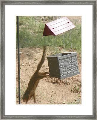 Thief Framed Print by Joseph Frank Baraba