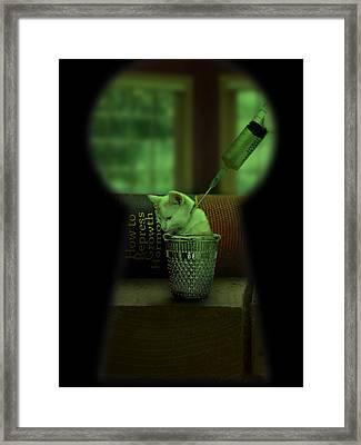 Thimble Kitten Framed Print