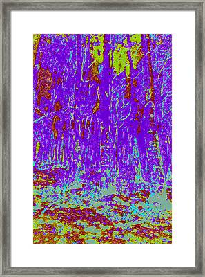 Thin Trees D4 Framed Print by Modified Image