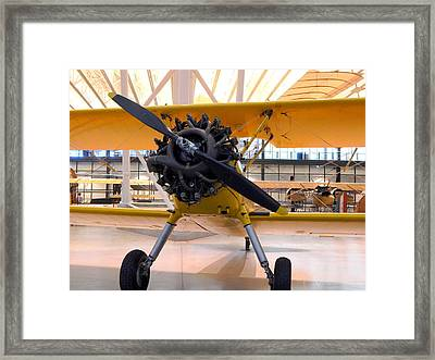 Things That Fly - 6 Framed Print by Arlane Crump
