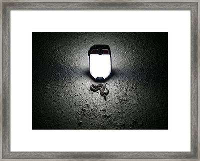 Things That Go Bump In The Night Framed Print by Kyle Findley