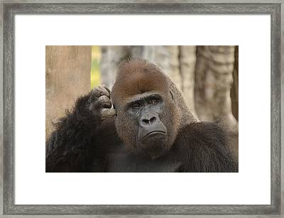 Think About It Framed Print by Keith Lovejoy