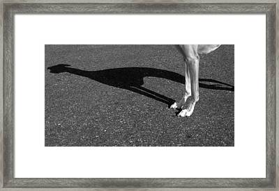 Think Big Framed Print by Chad Krieger
