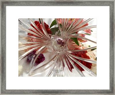 Think Outside The Vase #8801_0 Framed Print