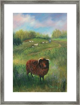 Thinking Of Ewe Framed Print by Sally Seago