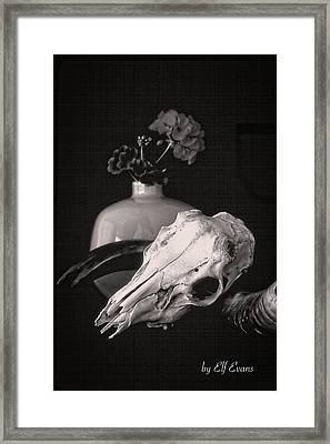 Framed Print featuring the photograph Thinking Of Georgia O'keeffe by Elf Evans