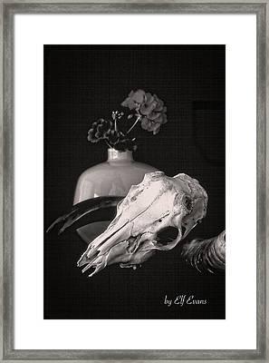 Thinking Of Georgia O'keeffe Framed Print