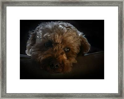 Framed Print featuring the photograph Thinking Of You by Tom Vaughan