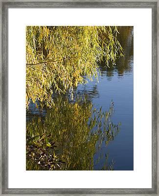Framed Print featuring the photograph Thinking by Tara Lynn