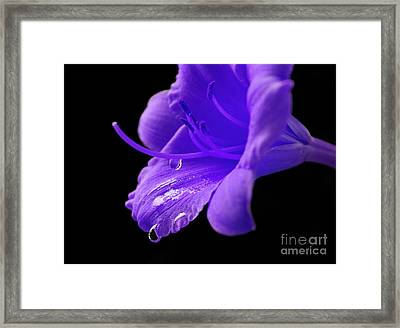 Thirst For Life Framed Print