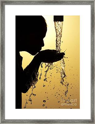 Thirst Framed Print by Tim Gainey