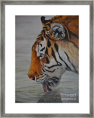 Thirsty Framed Print by Charlotte Yealey