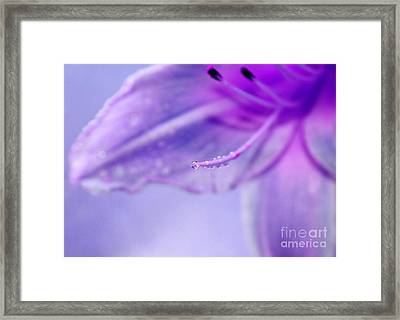 Thirsty For Life Framed Print by Krissy Katsimbras