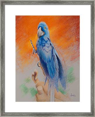 Framed Print featuring the painting This Bird Had Flown by Joe Winkler