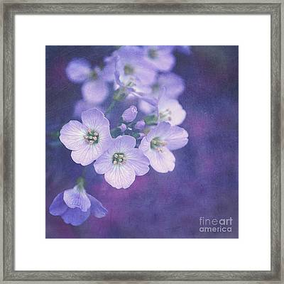 This Enchanted Evening Framed Print