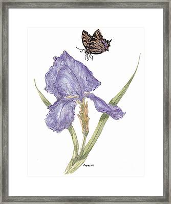 Framed Print featuring the painting This Great Purple Butterfly by Stanza Widen