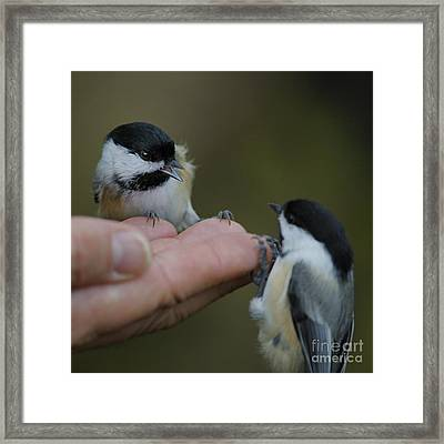 This Hand Is Mine Framed Print