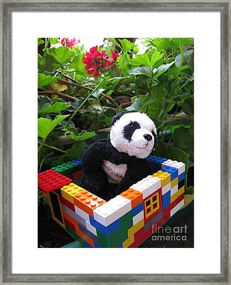 Framed Print featuring the photograph This House Is Too Small For Me by Ausra Huntington nee Paulauskaite