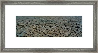 This Is A Pattern In Dry, Cracked Mud Framed Print