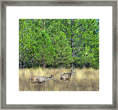 This Is British Columbia 14 - Two And Three Points Framed Print by Paul W Sharpe Aka Wizard of Wonders