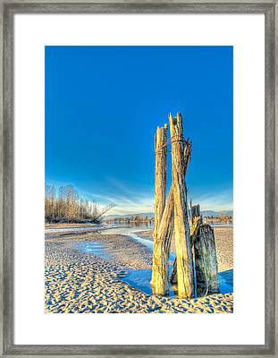 This Is British Columbia No.43 - Frost On The Fraser Framed Print by Paul W Sharpe Aka Wizard of Wonders