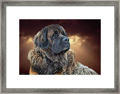 This Is Grizz Framed Print