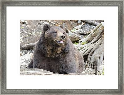 This Is Me Smiling Framed Print