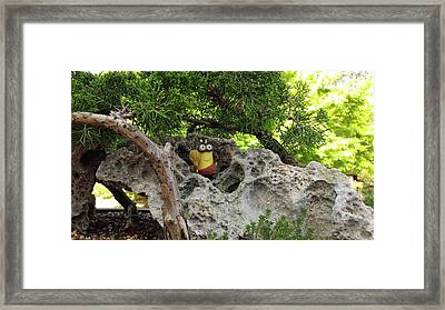 This Is My Rock Framed Print by Liza Eckardt