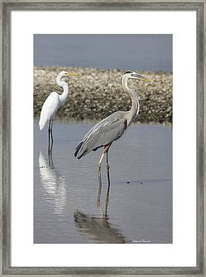This Is My Space Framed Print