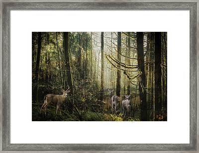 This Is Our Home Framed Print by Belinda Greb