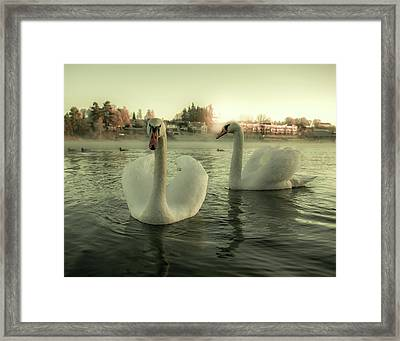 This Is Purity And Innocence Framed Print