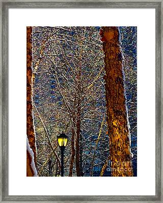This Is The Land Of Narnia Said The Faun  Framed Print