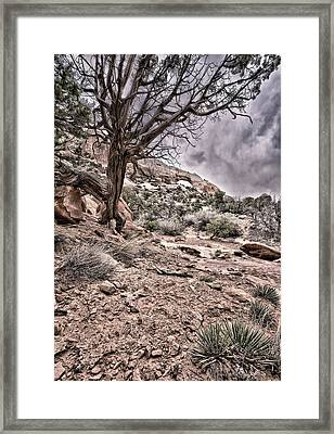 This Is Utah No. 9 - Morning At Williams Arch Framed Print by Paul W Sharpe Aka Wizard of Wonders