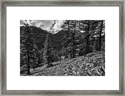 This Is Washington State No.1b - Klipchuck Framed Print by Paul W Sharpe Aka Wizard of Wonders