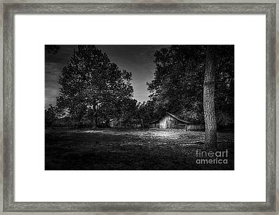 This Is Your Day Framed Print