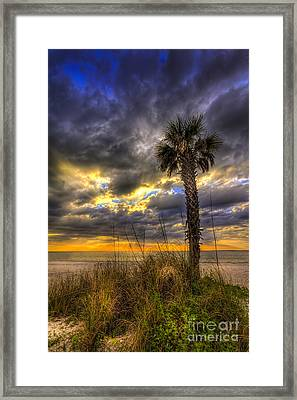 This Is Your Spot Framed Print by Marvin Spates
