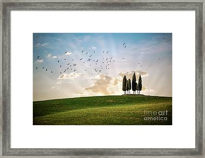This Majestic Land Framed Print by Evelina Kremsdorf