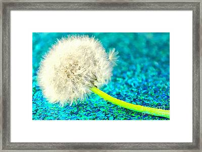 This Particular Wish Framed Print by Krissy Katsimbras