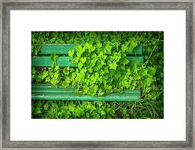 This Seat Is Taken Framed Print